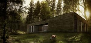 Dom w lesie – 081 Architekci