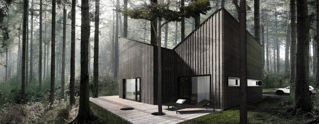 Dom wtopiony w krajobraz lasu projektu studia Libido Architekci