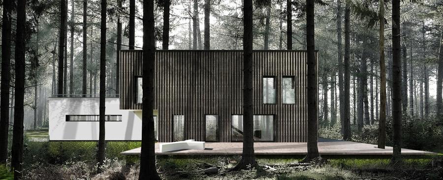 Dom w lesie. Projekt: Libido Architekci