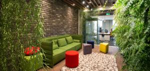 Przyjazna i pełna życia przestrzeń biurowa firmy informatycznej Codewise