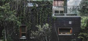 Ten dom żyje razem z otoczeniem. Niezwykły Jungle House projektu biura MAZM