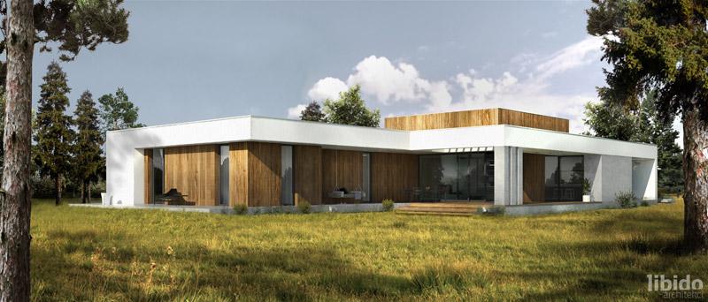 Dom podłużny. Projekt:Libido Architekci